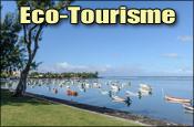 Tourisme-Economie-Insertion